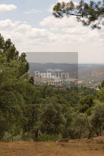 Finca de 40ha en venta en sierra norte sevilla fincas r sticas buhaira - Buhaira consulting ...