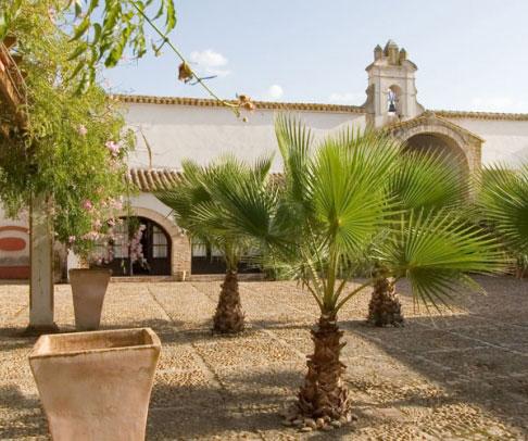 Finca en venta en Campiña de Carmona (1358)