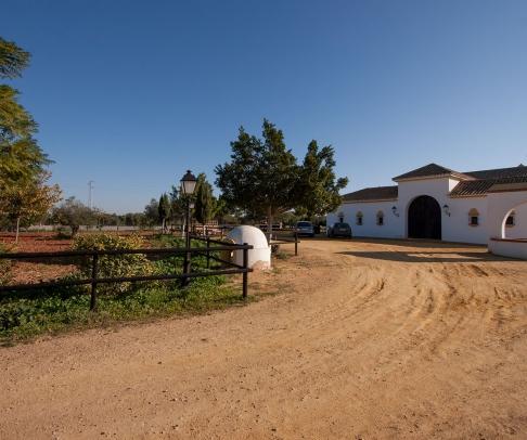 Country House for sale in Campiña de Carmona (1802)