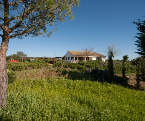 Country House for sale in Doñana (1838)