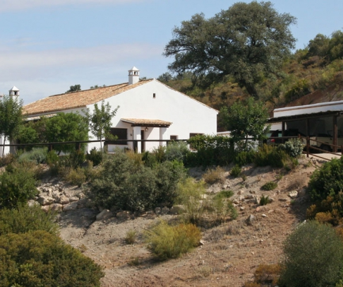 Country House for sale in Campiña de Morón y Marchena (2130)