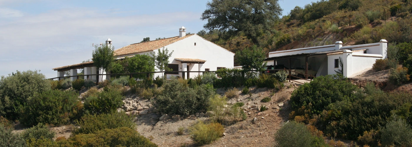 94.40Ha country house  for sale in  Campiña de Morón y Marchena, Sevilla