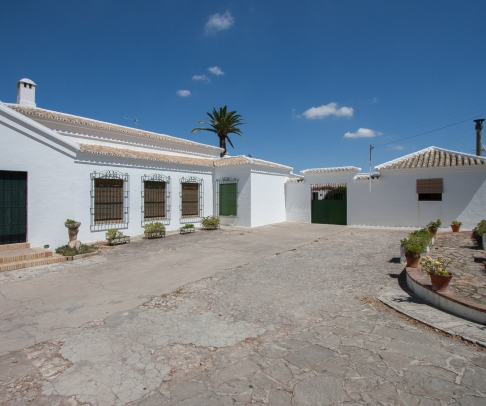 Country House for sale in Campiña de Morón y Marchena (2183)