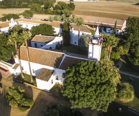 Country House for sale in Campiña de Carmona (2212)