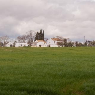 Vista principal