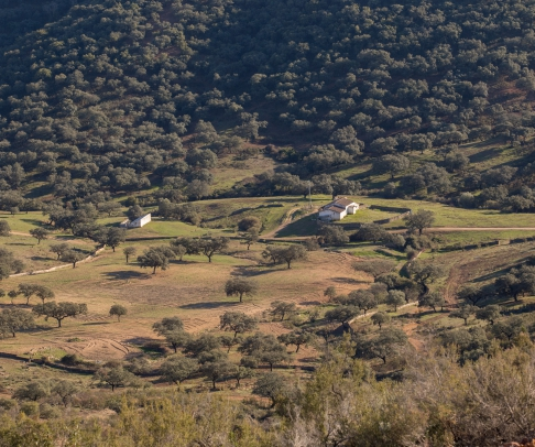 Finca en venta en Sierra de Huelva (2260)