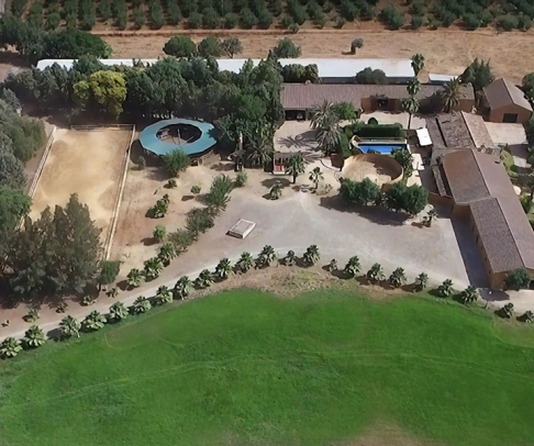 Country House for sale in Aljarafe (2316)