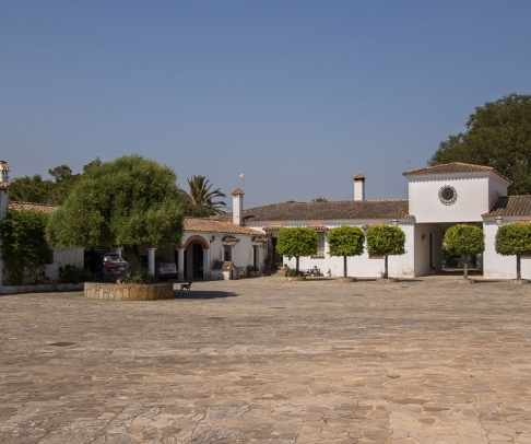 Country House for sale in La Janda (2451)