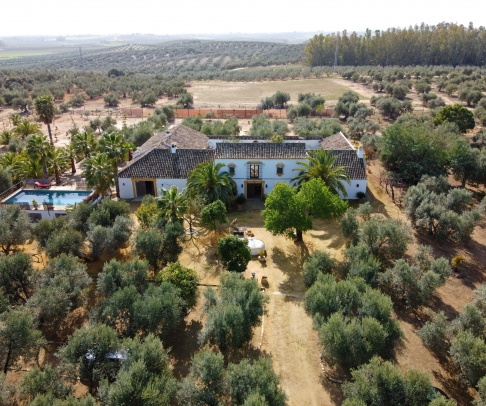 Country House for sale in Campiña de Morón y Marchena (2525)